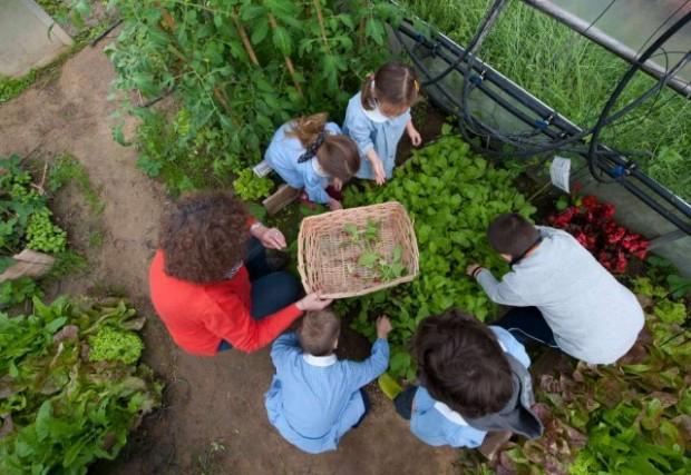 orto-a-scuola-bambini-slow-food-7-640x441